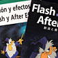 Flash + After Effects Korean translated edition